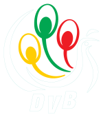 DVB Multimedia Group